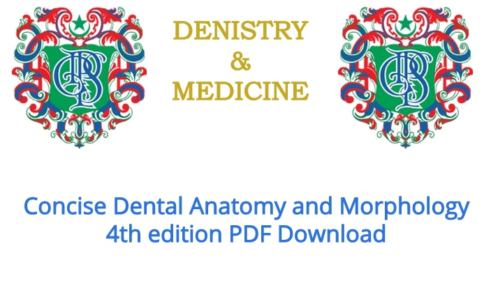 Concise Dental Anatomy And Morphology 4th Edition Pdf Download