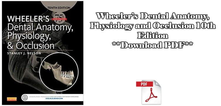 Wheelers Dental Anatomy Physiology And Occlusion 10th Edition