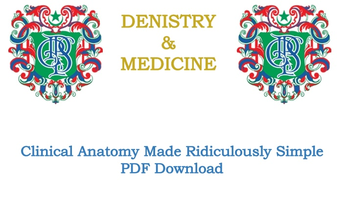 Clinical Anatomy Made Ridiculously Simple Pdf Download Dentistry