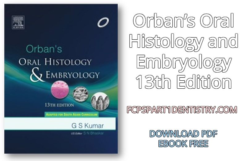Download Orban S Oral Histology And Embryology 13th Edition Pdf Free